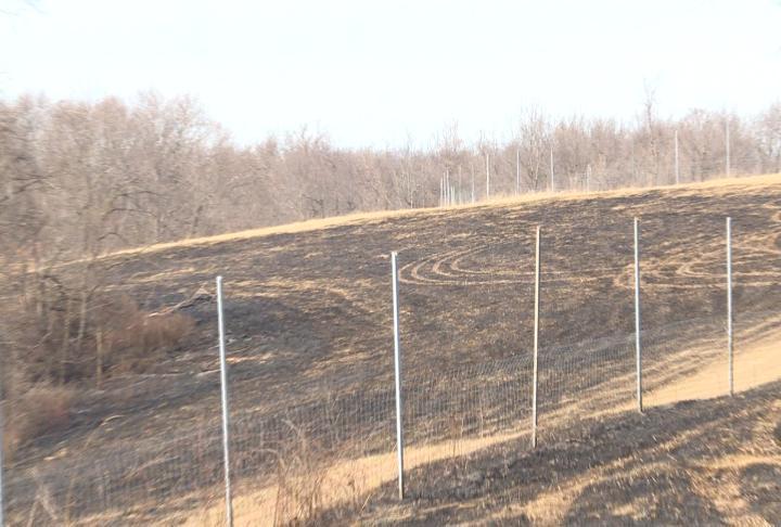 Field burned outside of Nebo, IL