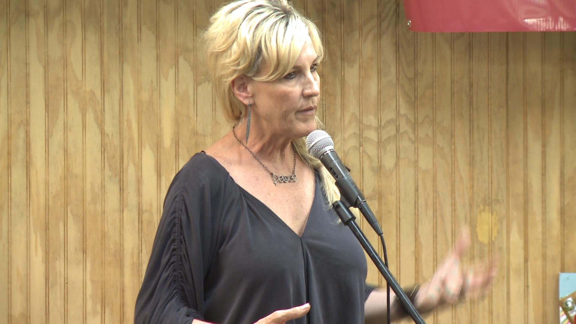 Environmental activist Erin Brockovich speaks on the issue of Hannibal's water quality at the American Legion hall on Wednesday night.