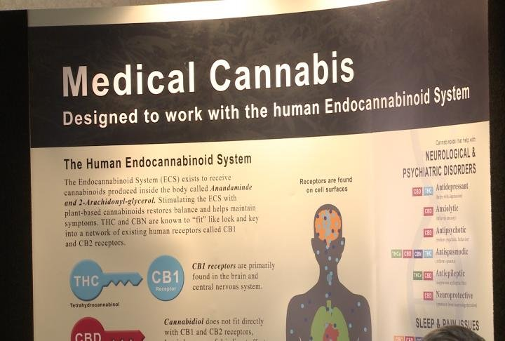 A sign details uses of medical cannabis.