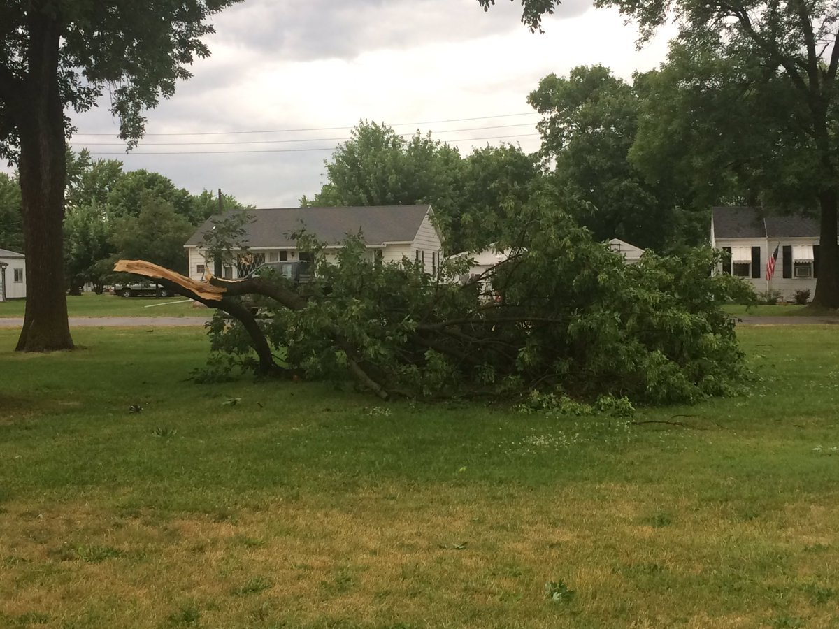 Tree limb down during storm Wednesday afternoon in Lewistown. (Submitted by Katelyn Clickner)
