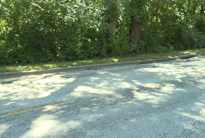 A section of R.J. Peters Drive in bad shape.