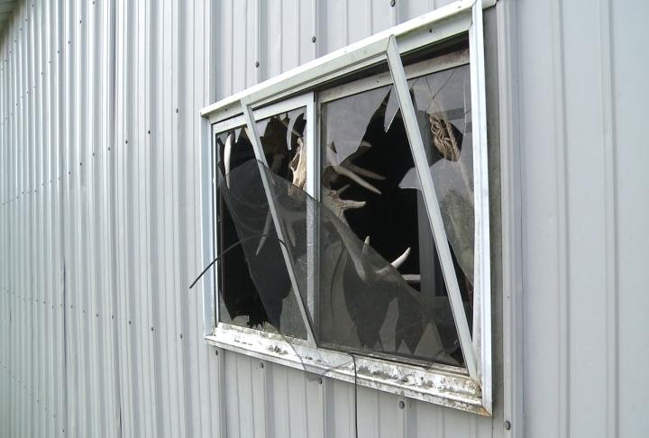 Window damaged in Clark County.