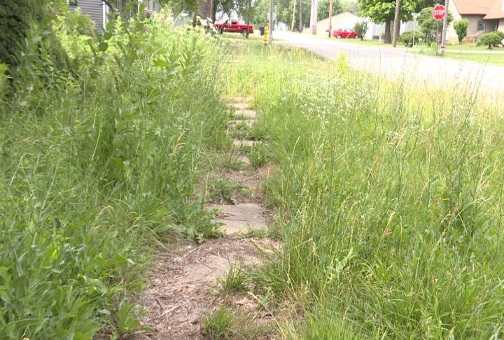 The city of Kahoka has been dealing with tall grass problems at some properties.