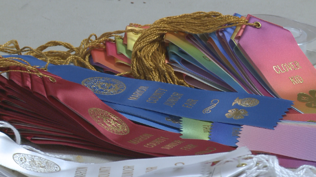 Ribbons for the participants