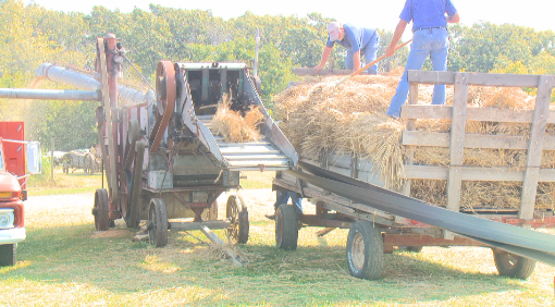 Workers demonstrate threshing at the Adams County Fair.