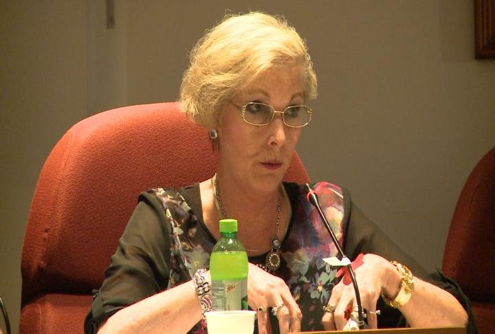 Alderman Terri Heinecke talks during Monday's Quincy City Council meeting.