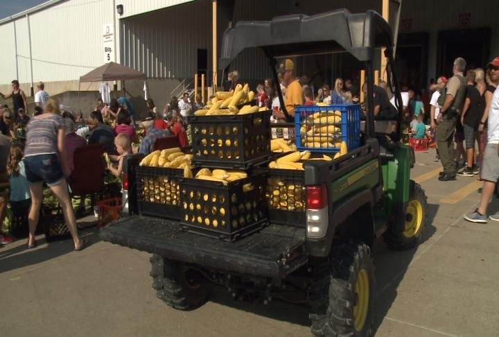 Roughly 33,000 corn ears were included in this year's event, all from Savanna, IL.