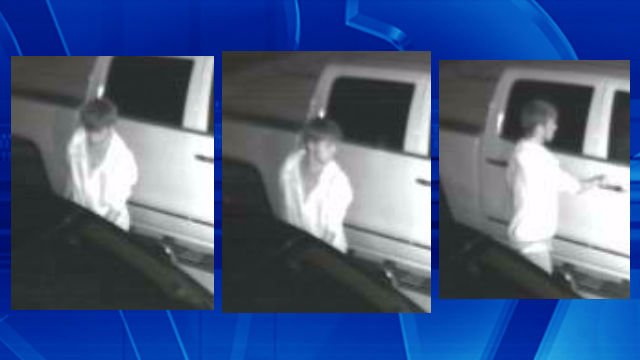 Photos from surveillance footage.