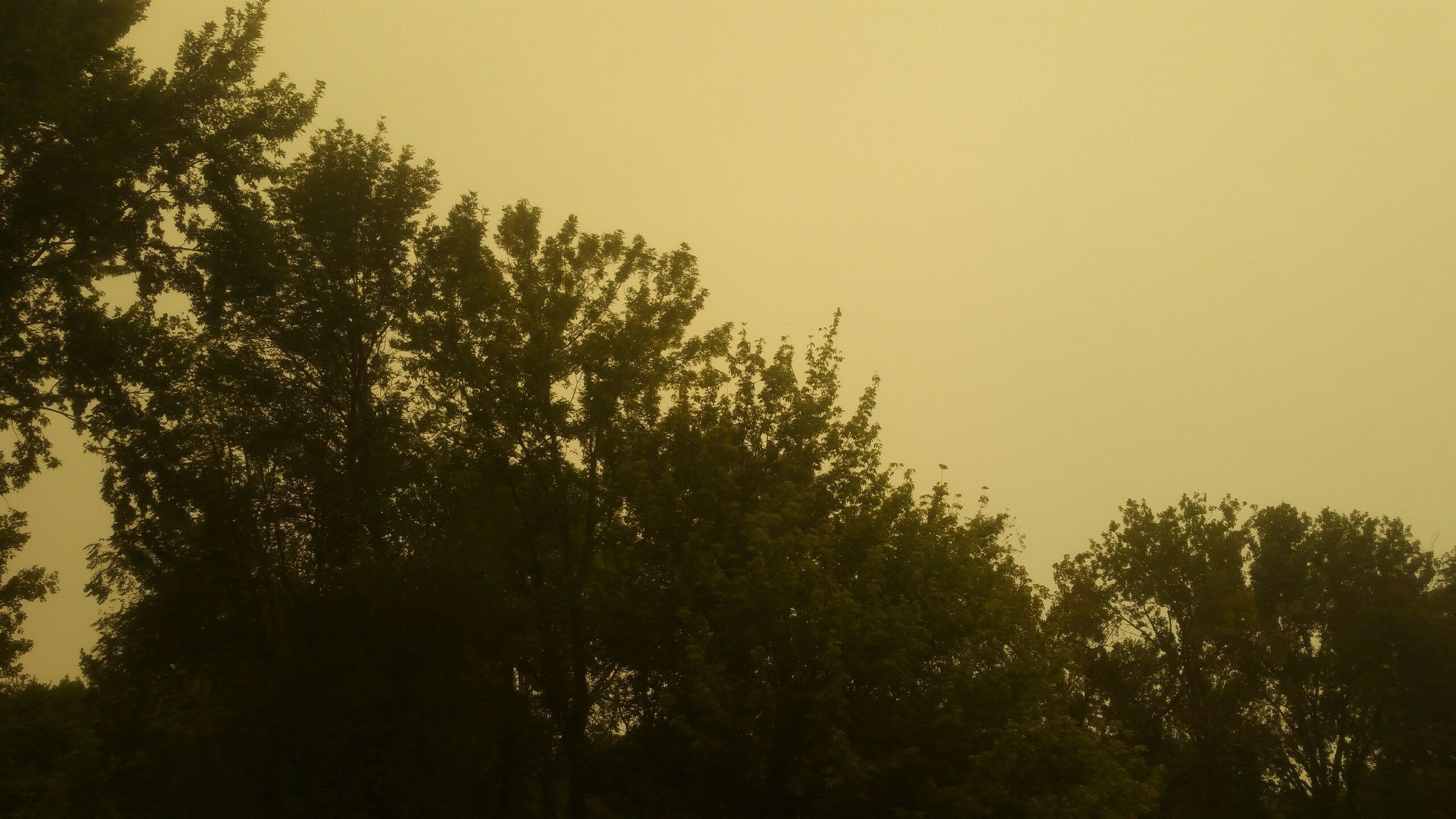Submitted photo showing yellow-tinted skies in Quincy on Monday afternoon.