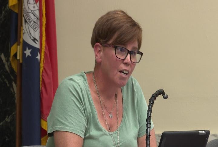 3rd Ward councilman Melissa Cogdal talks during Tuesday's meeting.