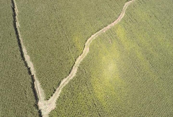 Aerial view of the path made by a vehicle.