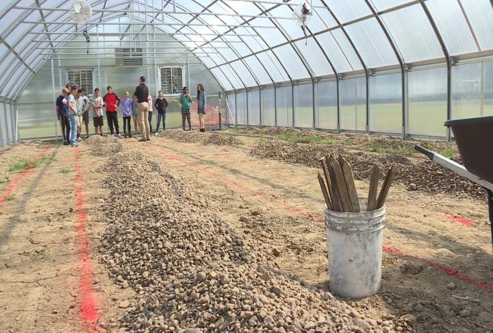 Students taking a look inside the greenhouse