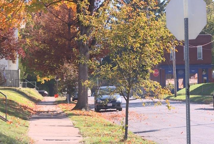 Trees line the street in Quincy.