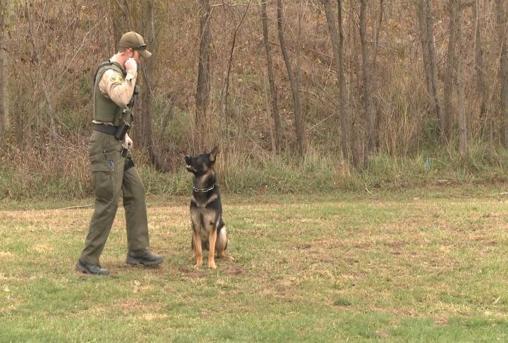 Dakota and Kion begin training next week in Fort Dodge, Iowa