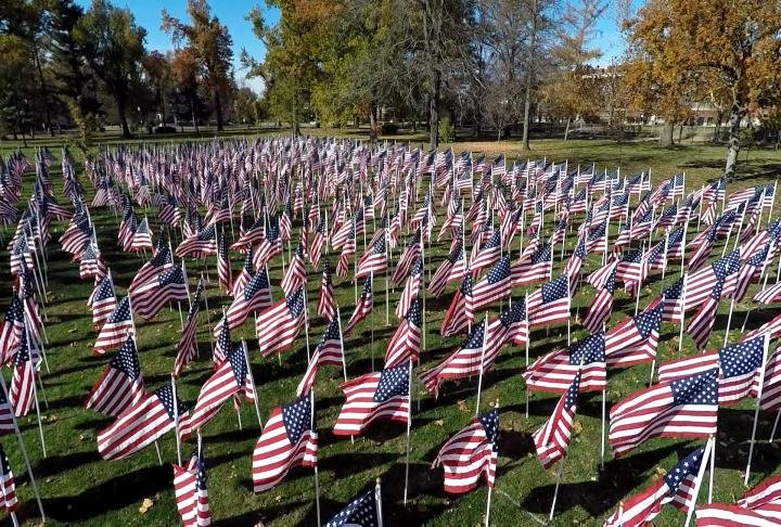 A total of 1000 flags were put up in Madison Park. Courtesy of the WGEM News Drone.