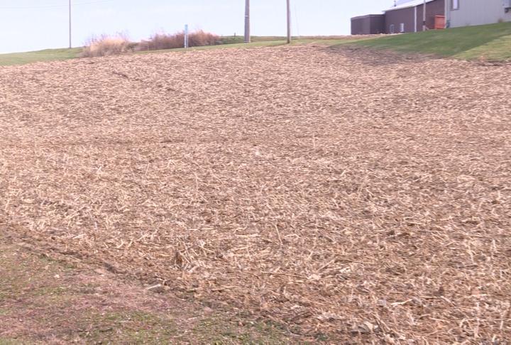 Farmland in Adams County
