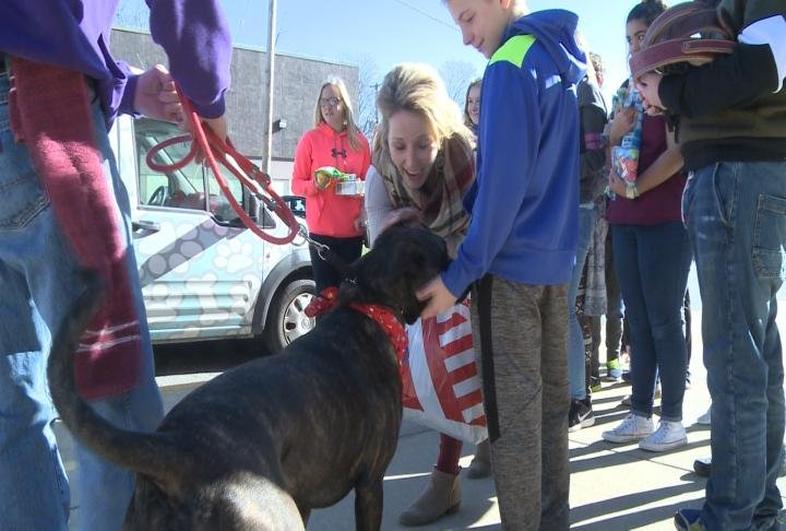 Students playing with a foster dog from the humane society