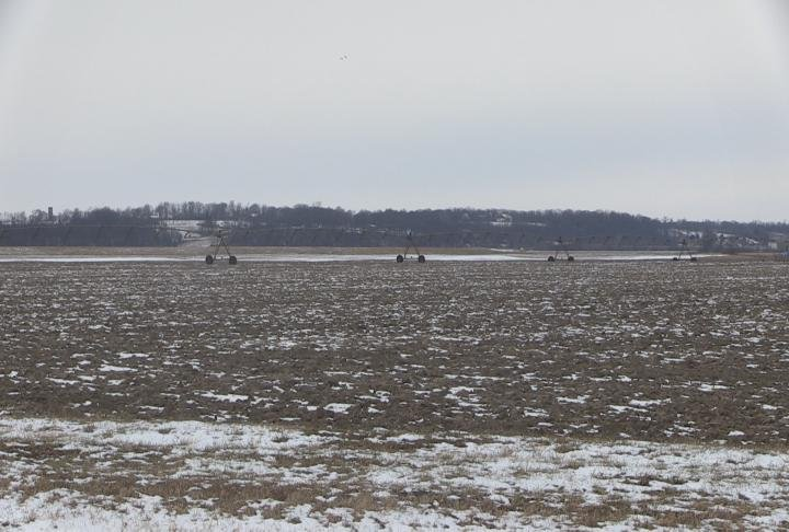 Crops are now covered in snow and ice.