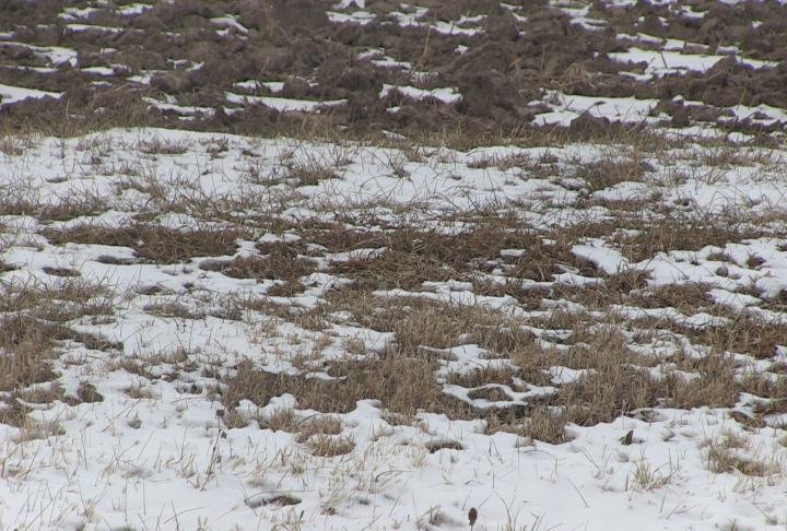Sub-zero temperatures and lack of moisture are having an effect on soil in the Tri-States.