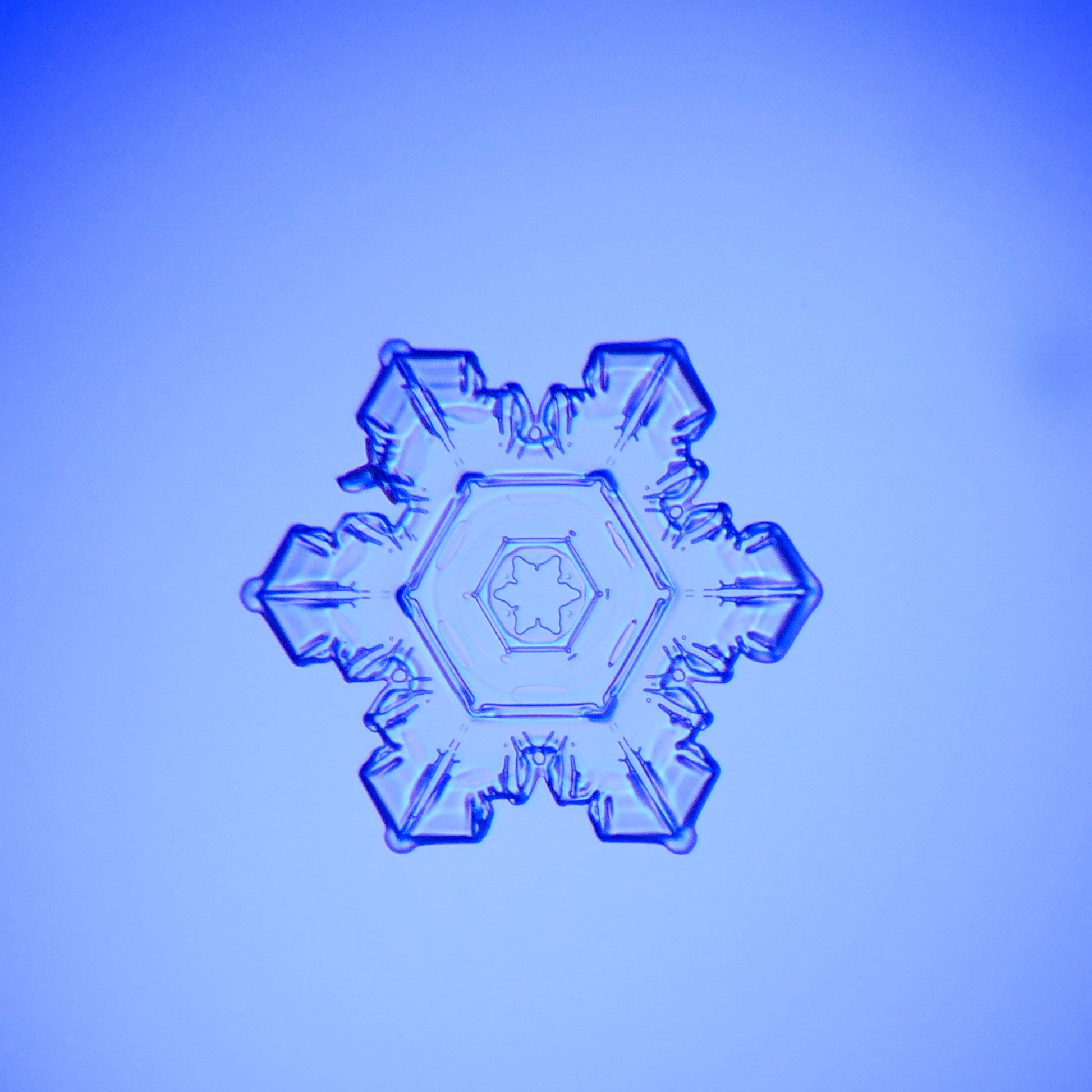Snowflake photo by Ethan Beckler.