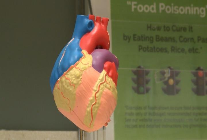 A model heart at Blessing Hospital.