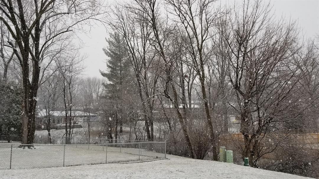 Snow blankets a Quincy neighborhood Sunday morning.