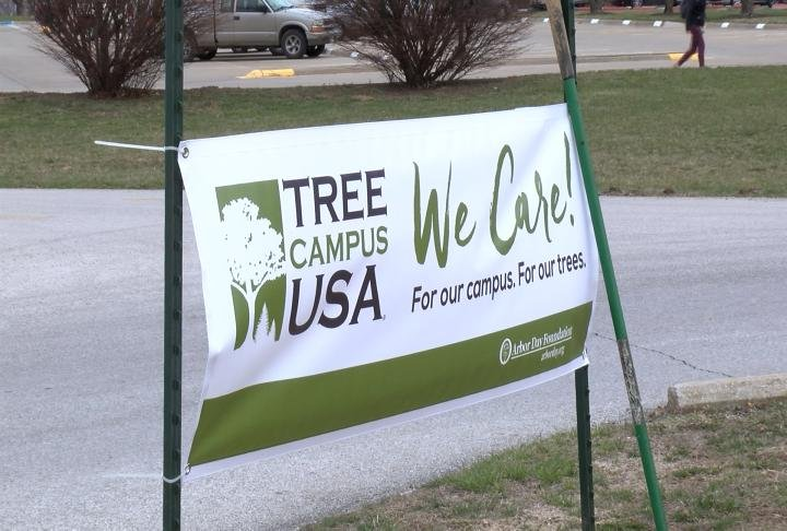 HLGU is designated as a Tree Campus USA Institution.