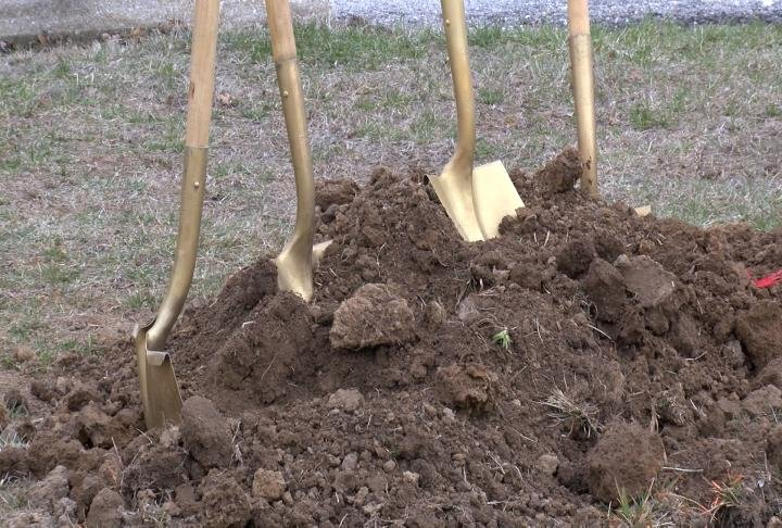 The University said this is helping the process of replanting the trees that were lost during the wind storm in 2013.