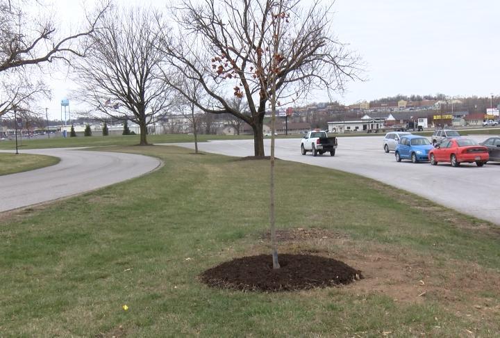 HLGU celebrated Arbor Day on Friday.