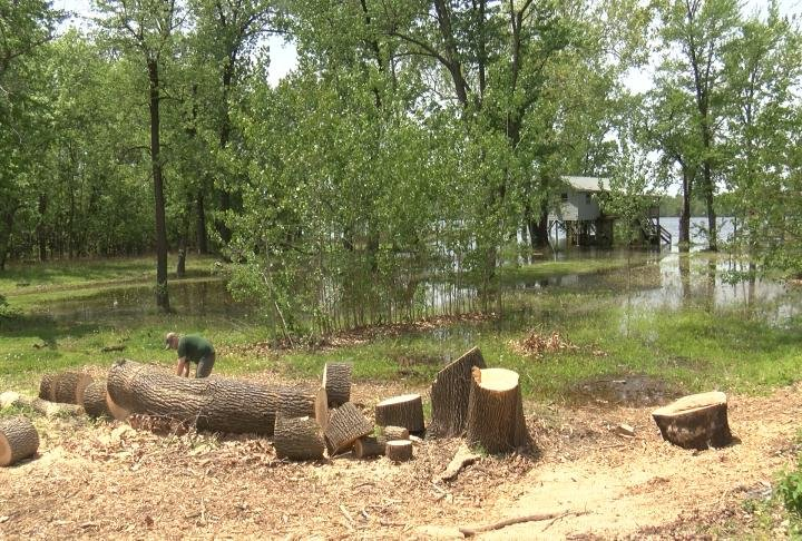 Smith removing logs from his property before the water takes them away.