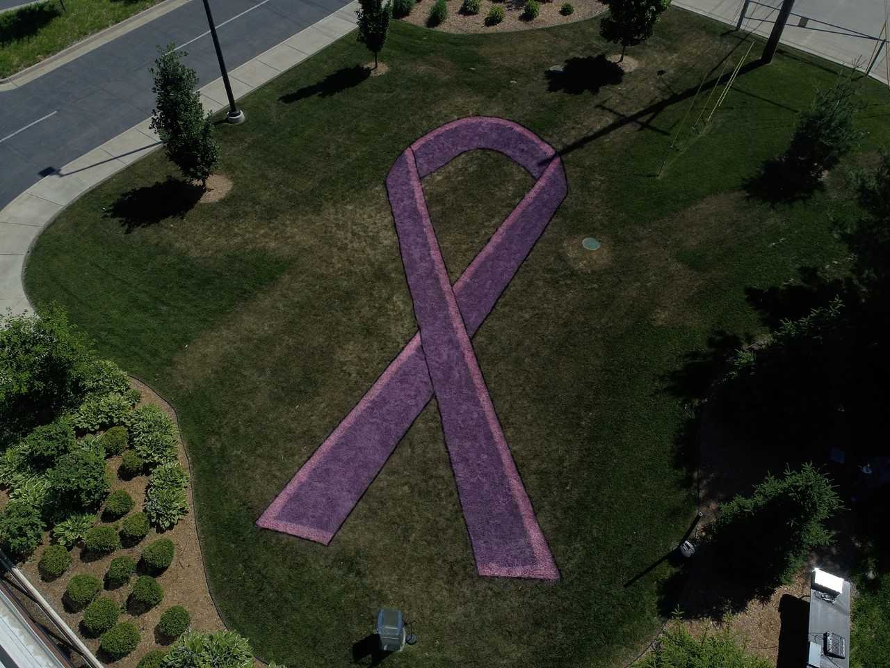 A cancer ribbon is painted on the lawn  outside of Blessing Hospital. (Photo provided by Blessing Healthcare system.)