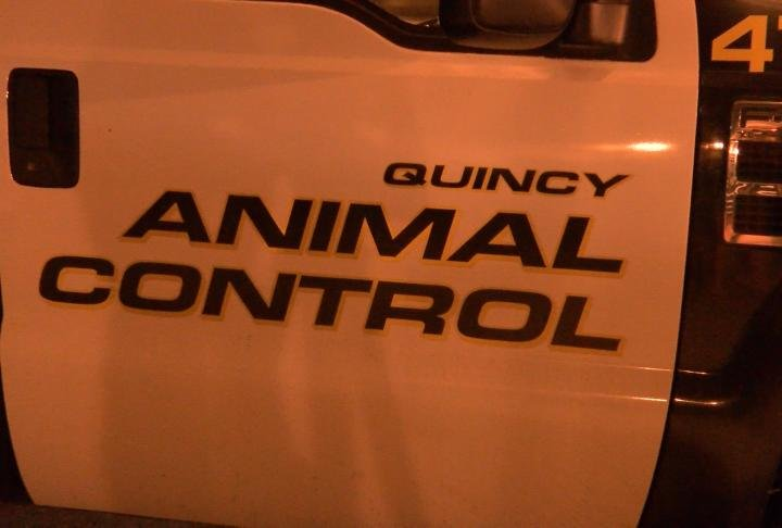 QPD said to contact them if you believe an animal is danger.