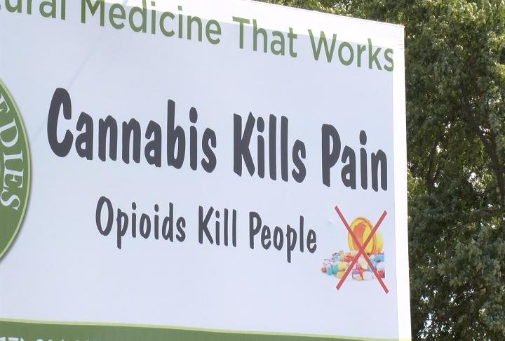 The billboard, put up by Herbal Remedies, reads'Cannabis kills pain. Opioids kill people.'