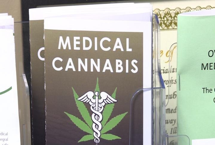 Would medical marijuana be a better alternative than opioids when it comes to treating pain?