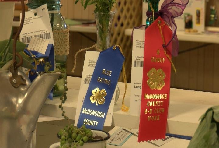 Judges award ribbons to winners of the different competitions throughout the week.