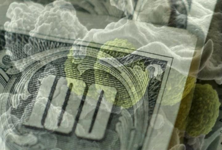 Studies across the country have found over 3,000 types of bacteria live on the average dollar bill, and while the majority of germs found on cash and coins are harmless, powerful viruses can travel with currency.