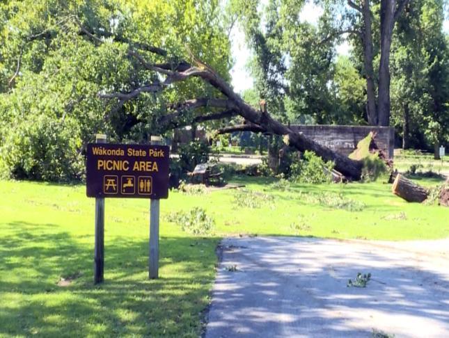 Trees fell at Wakonda State Park Monday night.