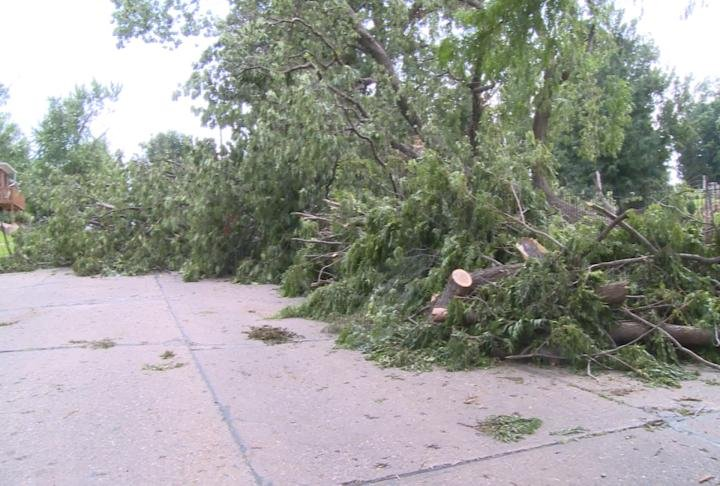 Amy Bott still has a tree with tangled power lines blocking the street outside her house near 5th and Jefferson.