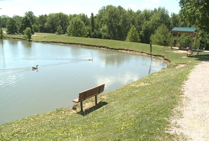 Huckleberry Park Pond